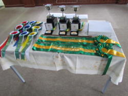 IMG_1607 Trophies & rosettes